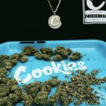 Cookies Brand Guide: Exotic Cannabis Products By Berner At Valley Pure